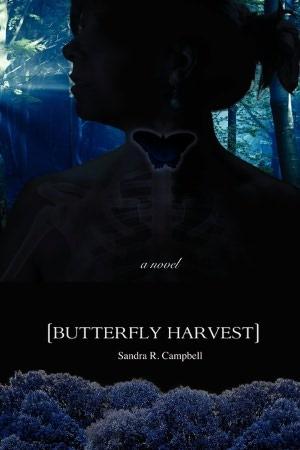 Butterfly Harvest
